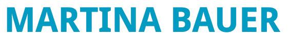 Bauer Text Art Logo